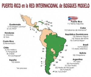 BosqueModelo_Mapa
